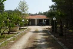villa with olive grove in oria brindisi for sale