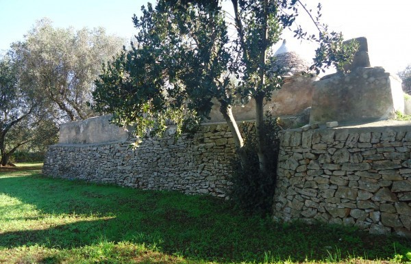 back of the trulli
