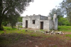 country house for sale ceglie messapica brindisi