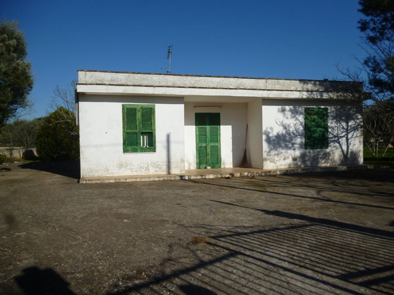 Country home for sale in Puglia Italy, with olive grove