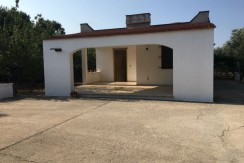 Property for sale in Puglia Italy with olive grove, CASA TERRY