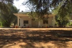Villa for sale in Puglia - Italy, Francavilla Fontana VILLA CANTAGALLO