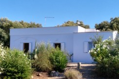 House with sea view for sale Ostuni, Puglia Italy, VILLA FASOLI