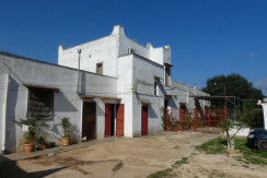 Property for sale in Puglia, Italy, Francavilla Fontana, ideal for B&B