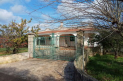 Property for sale in Puglia Italy, Ostuni, with appurtenant garden