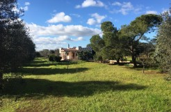 Country house for sale in Puglia Italy, Francavilla Fontana