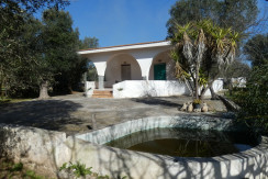 Country house for sale with olive grove, Francavilla Fontana