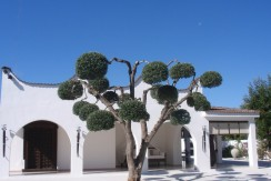 indipendent villa with swimming pool for sale in puglia, italy