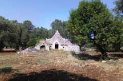 trullo for sale in puglia with olive grove