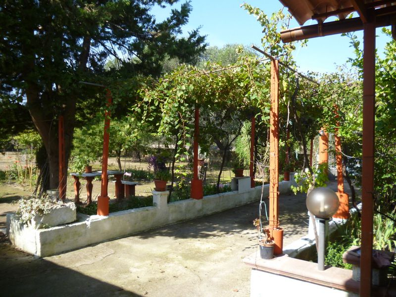 Country house for sale southern Italy Puglia with garden, HOUSE JENNY