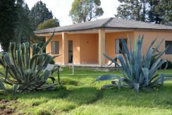 Villa for sale in Puglia Italy, with garden, VILLA ELY