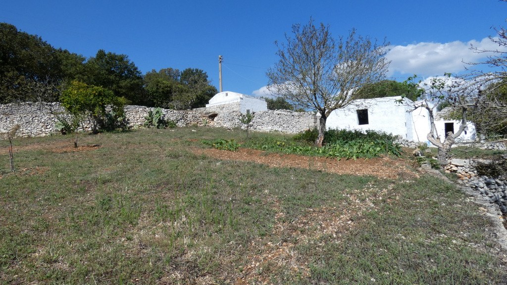 Property for sale with appurenant plot of land, HOUSE NIKKI