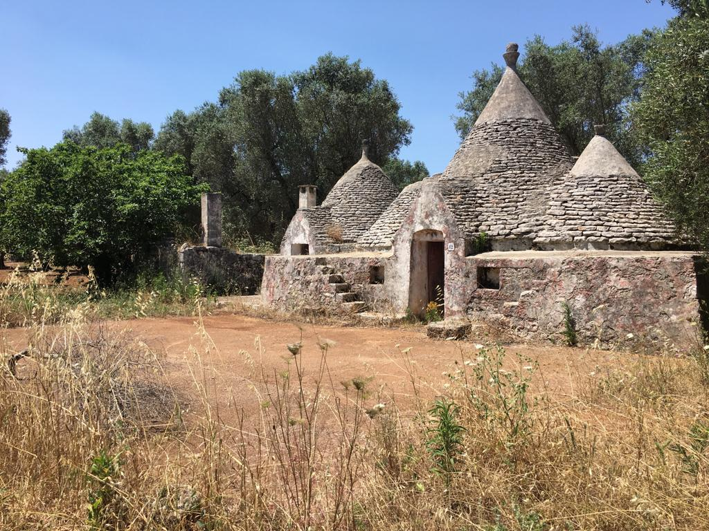 Trulli complex for sale Puglia, with olive grove
