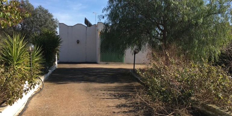 Country house for sale in Puglia, Francavilla Fontana, with olive grove