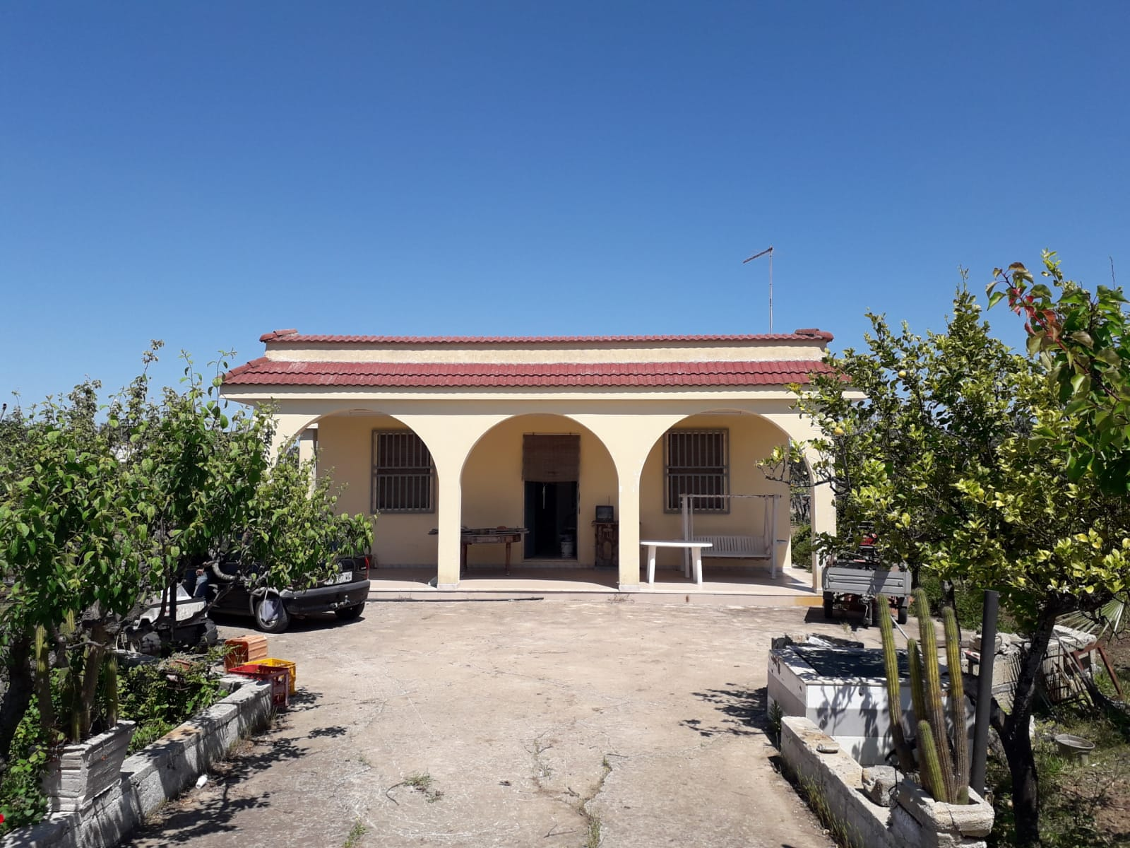 Country house for sale with olive grove and vineyard