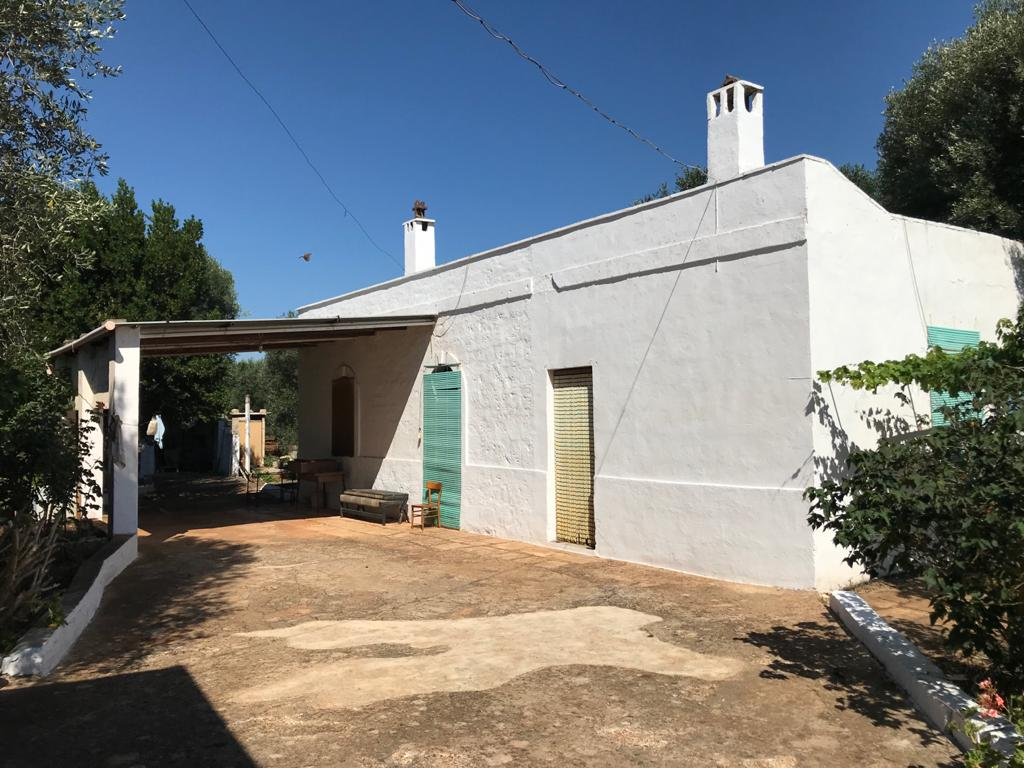 Country house for sale with vaulted ceilings and olive grove