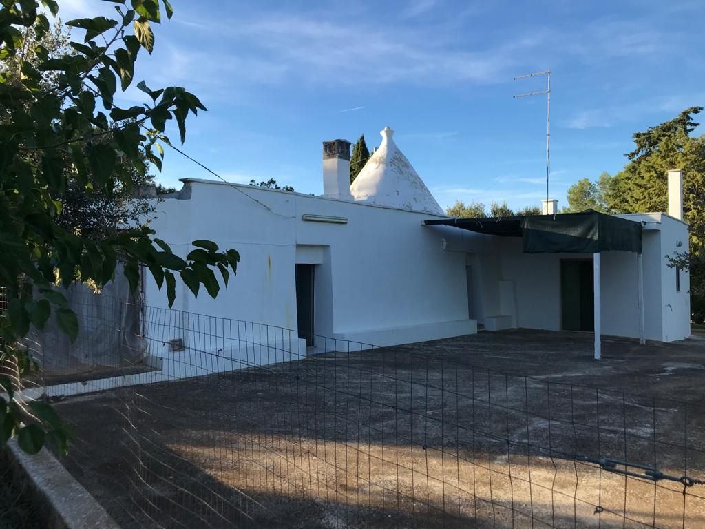 Trulli property for sale in good conditions, with olive grove