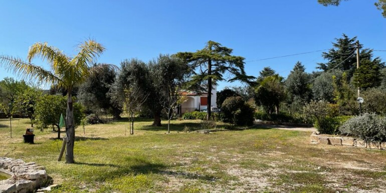 Villa for sale in Francavilla Fontana, in good conditions, with olive grove